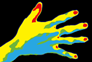 サーモグラフィーを利用して観測した手